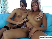 Black tgirls tugging cock and toying ass
