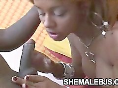 Ebony shemale pleasing a cock with her mouth