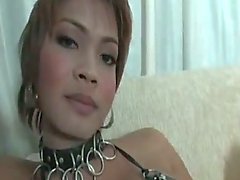 Fetished ladyboy wanking hot