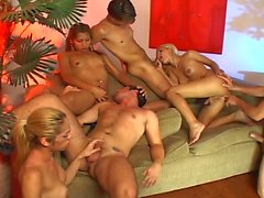 Hot shemale group orgy as dicks reign