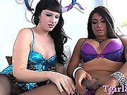 Beautiful Tgirl Bailey Jay analized another shemale Vaniity